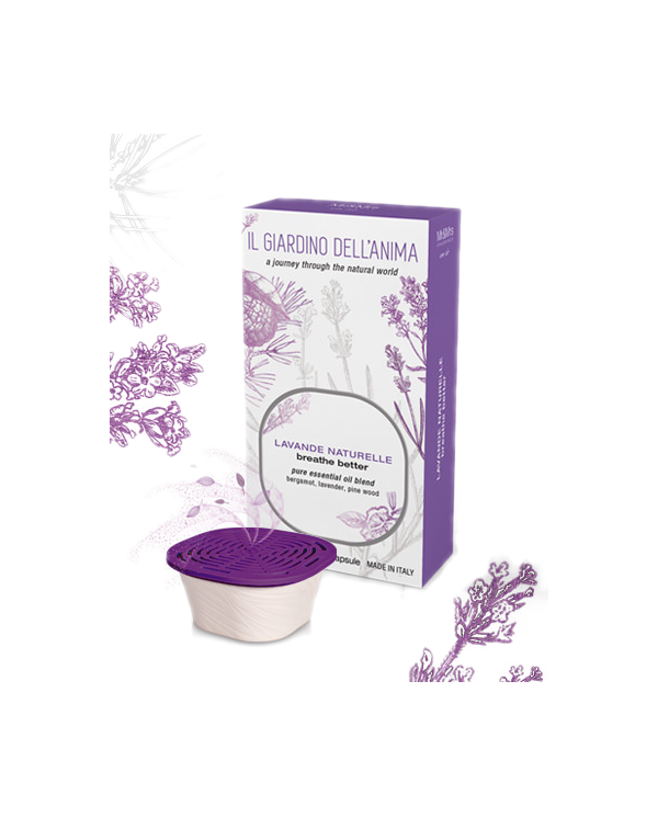 Capsule lavande naturelle pour purifier l'air ambiant Mr & Mrs Fragrance - 1